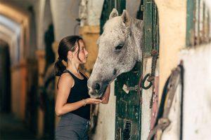 reiturlaub-familie-kinder-pferde