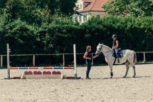 reiturlaub-kinder-pferde-reitunterricht