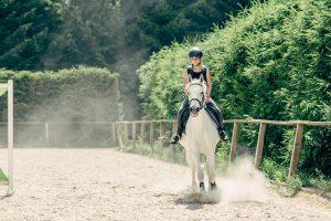 pferdeurlaub-reitplatz-pferd