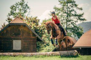 pferdeurlaub-springreiten-natur-ausreiten